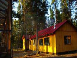 Cabins in the Sun Among the Trees