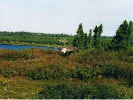 The Tundra by Lake